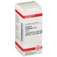 DHU Argentum metallicum C30 Tabletten