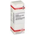DHU Calcium phosphoricum D200 Dilution