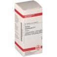 DHU Ferrum metallicum D8 Tabletten