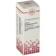 DHU Ferrum phosphoricum D30 Dilution