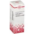 DHU Grindelia robusta D4 Dilution