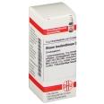 DHU Oleum terebinthinae D30 Globuli