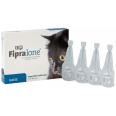 FIPRALONE® 50mg für Katzen