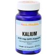 GALL PHARMA Kalium 200 mg GPH Kapseln