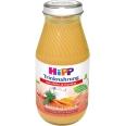 HiPP Trinknahrung Huhn Karotte hochkalorisch