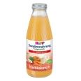 HiPP Trinknahrung Kürbis & Karotte hochkalorisch