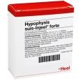 Hypophysis suis-Injeel® forte Ampullen