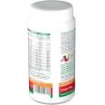 MEGAMAX® BASIC & ACTIVE Eiweiß 100 Vanille