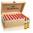 MURNAUERS Original Bachblüten Einzelessenzen Experten-Set in der Holzbox