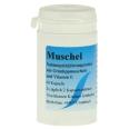 Muschel Aktiv Konzentrat Kapseln