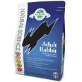 Natural Science Adult Rabbit
