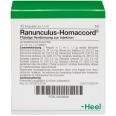 Ranunculus-Homaccord® Ampullen