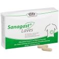 Sanagast® Laves