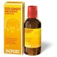 SOLIDAGO HEVERT® COMPLEX Tropfen