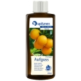 Spitzner® Wellness Saunaaufguss Orange