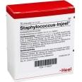 Staphylococcus-Injeel® Ampullen