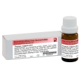 Thymus vulgaris D12 Globuli