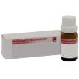 Thymus vulgaris D200 Globuli