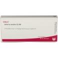 WALA® Arteria renalis Gl D 8