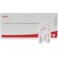WALA® Articulationes intervertebrales lumbales Gl D 12