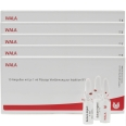 WALA® Cichorium Pancreas Comp. Amp.