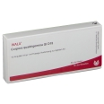 WALA® Corpora quadrigemina Gl D 15