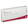 WALA® GALENIT/ Retina comp. Amp.