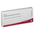 WALA® Glandula suprarenalis dextra Gl D 8