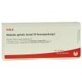 WALA® Medulla spinalis tota Gl Serienpackung 1 Ampulle