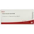WALA® Tunica mucosa nasi Gl D 6