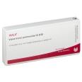 WALA® Valva trunci pulmonalis Gl D 30