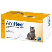 Amflee® 50 mg Lösung zum Auftropfen für Katzen
