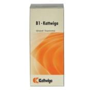 B 1 Kattwiga Tabletten