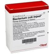 Bacterium coli-Injeel® Ampullen