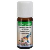 Bergland Weihrauch-Öl, 40% in Olibanum Resinoid