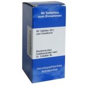 Biochemie 18 Calcium sulfuratum Hahnemanni D 6
