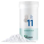 Biochemie Pflüger® Nr. 11 Silicea D12 Pulver