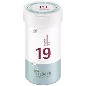 Biochemie Pflüger® Nr. 19 Cuprum arsenicosum D6 Tabletten