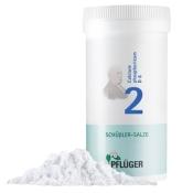 Biochemie Pflüger® Nr. 2 Calcium phosphoricum D6 Pulver