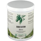 BIOFORTIN - horse