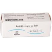 Br8 Glechoma cp JSO Globuli