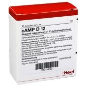 cAMP D12 Ampullen
