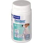 Cooldent® Kautabletten