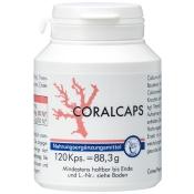 Coralcaps Kapseln
