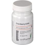 CranberrySAN