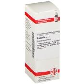 DHU Baptisia D12 Dilution
