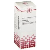 DHU Conium D30 Dilution