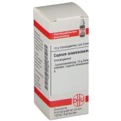 DHU Cuprum arsenicosum C1000 Globuli