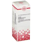 DHU Ferrum phosphoricum C6 Dilution