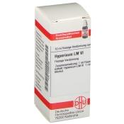 DHU Hypericum LM VI Dilution